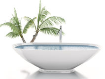 3d bathtub with palm tree. Summer concept. 3d illustration. Bathtub with palm tree. Summer concept. Isolated white background Royalty Free Stock Photography
