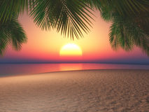 3D beach and palm trees against a sunset sky. 3D render of a beach and palm trees against a sunset sky Royalty Free Stock Photography