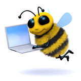3d Bee laptop Royalty Free Stock Photos