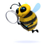 3d Bee magnifies. 3d render of a bee with a magnifying glass Stock Images