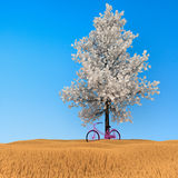3d bicycle. 3d bicycle under the tree in the background fields Royalty Free Stock Image