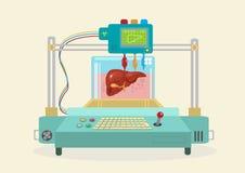 3D Bioprinter 被复制的人体器官 库存照片