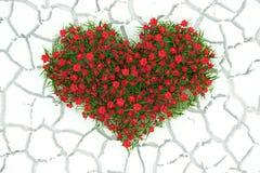 3d blüht Herz auf weißem Wüstenhintergrund Stockbilder