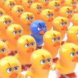 3d Blue chick amongst yellow chicks Stock Photos