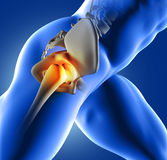 3D blue medical image of hip joint. 3D render of a blue medical image of close up of hip joint Stock Photos