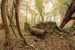 3D Boiler. 3D anaglyph illusion for a wide-angle shot of an old boiler abandoned in a forest. Shot taken somewhere on Inchagoill island in Lough Corrib Lake Stock Photography