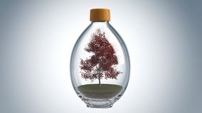 3D Bottle. 3D design in the glass bottle with forest landscape and tiny house inside and isolated on white background Stock Images