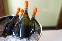 3d bottles model vit wine Fotografering för Bildbyråer