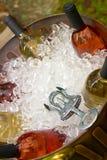 3d bottles model vit wine Arkivfoto
