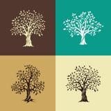 Dębowych drzew sylwetki set Zdjęcie Stock