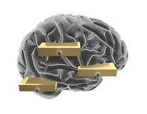 3d brain and drawers.  Thinking outside the box idea. Stock Image
