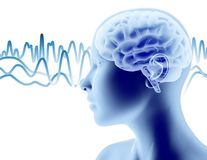 3D brain and face profile with brain waves, thinking process 3D illustration. Royalty Free Stock Photo