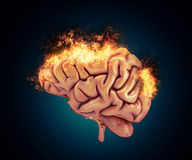 3D brain with flames. 3D render of a brain with flames Stock Images