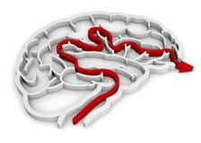 3D Brain Maze - Stock Foto