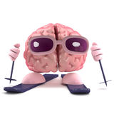 3d Brain ski Stock Photography