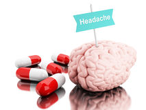 3d Brain with some pills and signboard with the word headache. 3D Illustration. Brain with some pills and a signboard with the word headache. Isolated white Royalty Free Stock Photography
