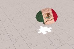 White Puzzle plane for Mexico Flag to Brain stock image