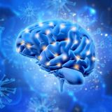 3D brain with various points highlighted Royalty Free Stock Images