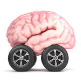 3d Brain on wheels Stock Photography