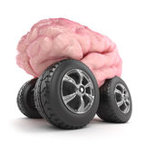 3d Brain on wheels Royalty Free Stock Photos