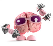 3d Brain works out Royalty Free Stock Photo