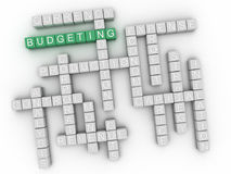 3d Budgeting Concept word cloud.  Stock Photography
