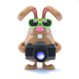 3d Bunny photographer Stock Photo