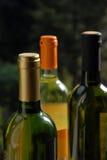 3d butelki modelują biały wino Obrazy Royalty Free