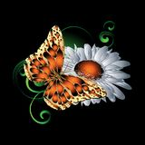 3d butterfly pattern. Vector colorful illustration. Black floral. Background with bright textured monarch butterfly, chamomile flowers, green paisley flowers Royalty Free Stock Photo