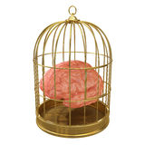 3d Caged brain. 3d render of a brain in a golden cage Stock Photo