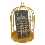 3d Calculator inside golden cage. 3d render of a calculater inside a gold bird cage Royalty Free Stock Photos