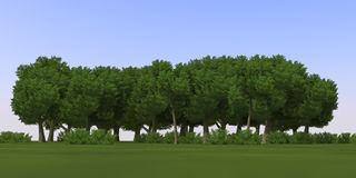 3D Cartoon anime trees Stock Image