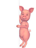 3d cartoon pig with a blank board Royalty Free Stock Images