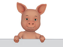 3d cartoon pig with a blank board Stock Images