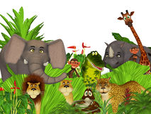 3d cartoon wild jungle animals. Cute illustration of a group of wild animals Stock Photography