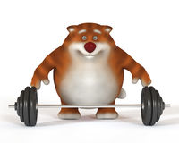 3d cat weightlifter Stock Image