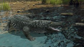 Crocodile. 3D CG rendering of a crocodile stock images