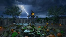 Jack o lantern Stock Photos