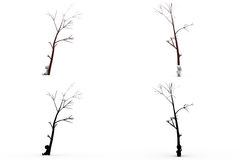 3d character under the tree concept collections with alpha and shadow channel Royalty Free Stock Photos