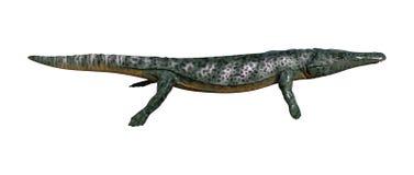3D che rende Archegosaurus su bianco Immagini Stock Libere da Diritti