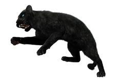 3D che rende pantera nera su bianco Fotografia Stock