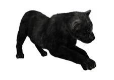 3D che rende pantera nera su bianco Fotografie Stock