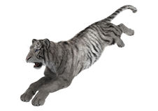 3D che rende tigre bianca su bianco Immagini Stock