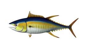 3D che rende Tuna Fish su bianco Fotografie Stock