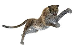 3D cheetah Stock Image