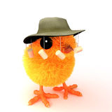 3d Chick goes to Australia Stock Image
