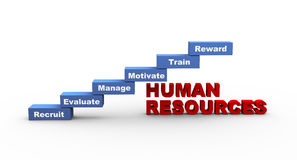3d concept of human resources. 3d illustration of words related to concept of human resources Royalty Free Stock Photography