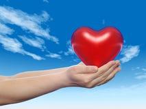 3D conceptueel die hart in handen wordt gehouden Stock Fotografie