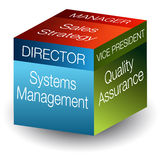 3d Corporate Roles Cube Stock Image