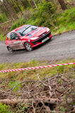 D. Cronin driving Peugeot 206 Royalty Free Stock Photography
